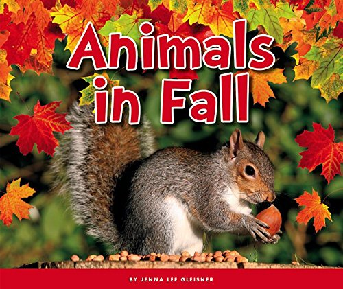 9781503816596: Animals in Fall (Welcome, Fall!)