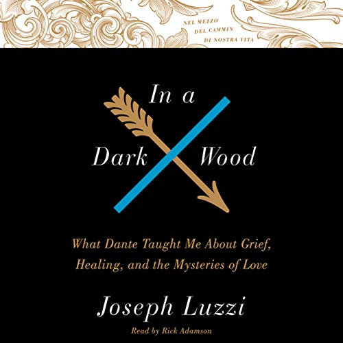 In a Dark Wood - What Dante Taught Me about Grief, Healing, and the Mysteries of Love: Joseph Luzzi