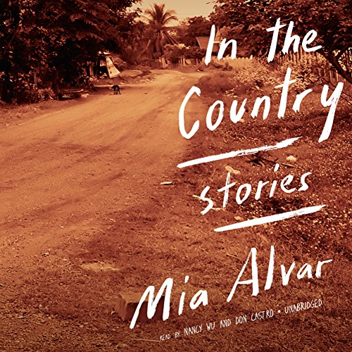9781504646529: In the Country: Stories