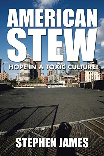 9781504929141: American Stew: Hope in a Toxic Culture