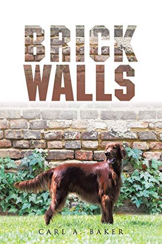 9781504967464: Brick Walls