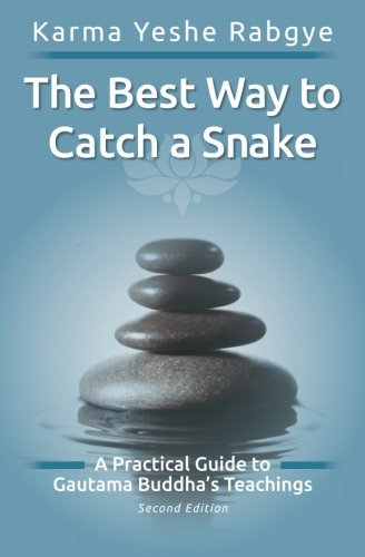 The Best Way to Catch a Snake: Karma Yeshe Rabgye