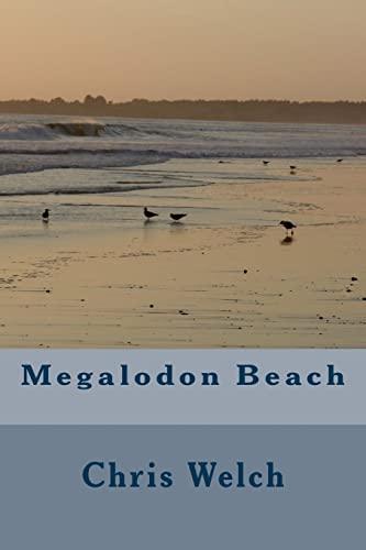 9781506130354: Megalodon Beach