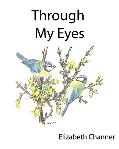 Through My Eyes: A book of poems mainly for children and the young at heart: Channer, Elizabeth A