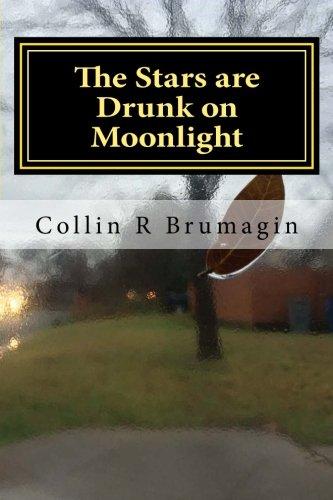 9781507539477: The Stars are Drunk on Moonlight: Poems 2014