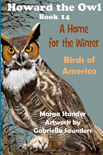 A Home for the Winter: Book 14 (Howard the Owl) (Volume 1): Stander, Marga