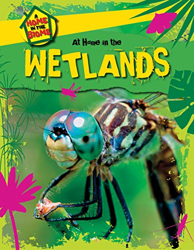 9781508145691: At Home in the Wetlands (Home in the Biome)