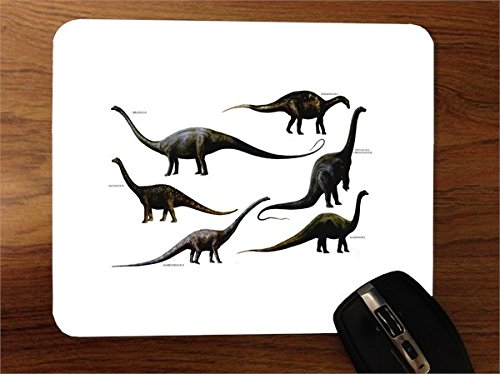 9781508190301: Long-Necked Dinosaurs (Prehistoric Animals (Windmill Books))