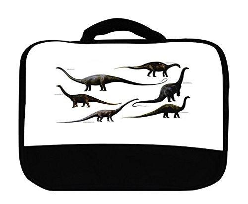 9781508190325: Long-necked Dinosaurs (Prehistoric Animals)