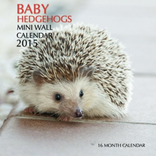 9781508459125: Baby Hedgehogs Mini Wall Calendar 2015: 16 Month Calendar