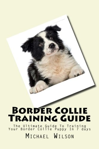9781508685364: Border Collie Training Guide: The Ultimate Guide To Training Your Border Collie Puppy In 7 days