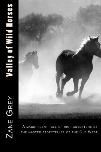 9781508864110: Valley of Wild Horses