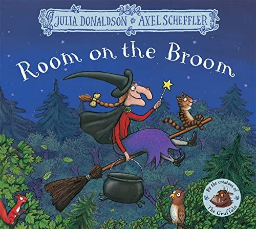 9781509804771: Room on the Broom