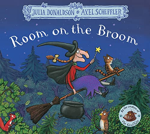 9781509804771: Room on the Broom