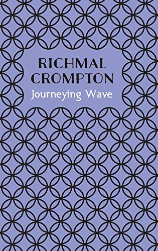 9781509810130: Journeying Wave