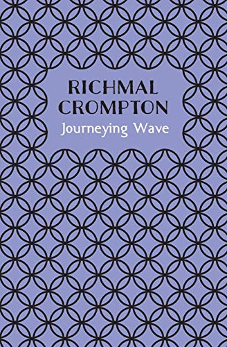 9781509810147: Journeying Wave