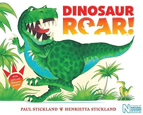 9781509827381: Dinosaur Roar!