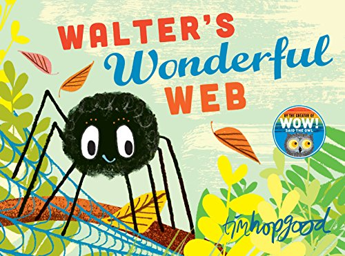 Walter s Wonderful Web (Paperback)