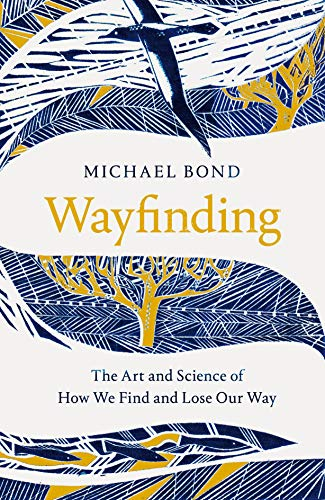 9781509841066: Wayfinding: The Art and Science of How We Find and Lose Our Way