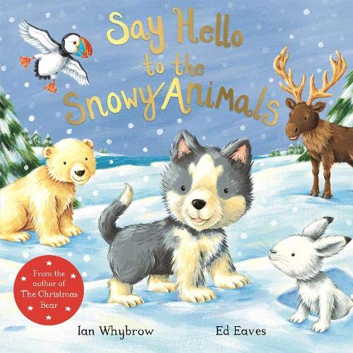9781509873906: Say Hello to the Snowy Animals