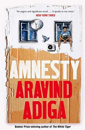 9781509879052: Amnesty