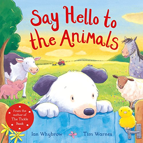 9781509885527: Say Hello to the Animals