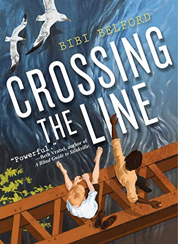 9781510708006: Crossing the Line