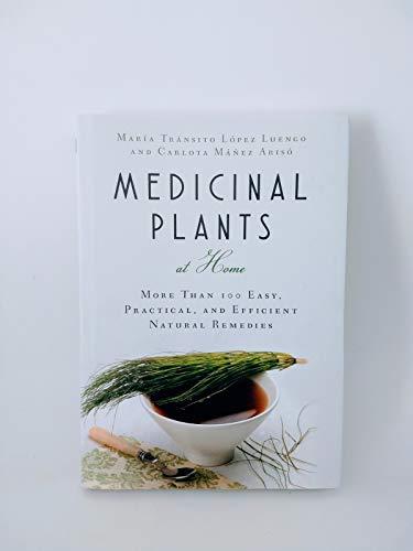 Medicinal Plants at Home: More than 100: Maria Transito Lopez
