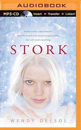 Stork (Stork Trilogy): Wendy Delsol