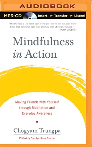 Mindfulness in Action: Making Friends with Yourself through Meditation and Everyday Awareness: Chà ...