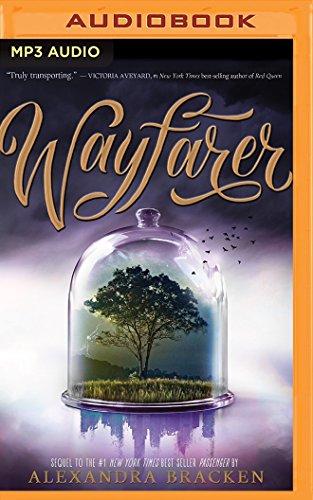 9781511361217: Wayfarer (Passenger)