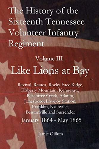 The History of the Sixteenth Tennessee Volunteer: Gillum, Jamie