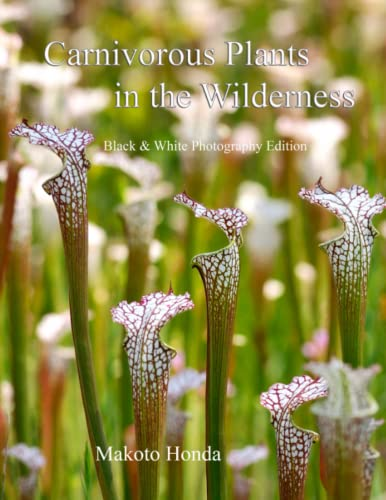 9781511825979: Carnivorous Plants in the Wilderness: Black & White Photo Edition