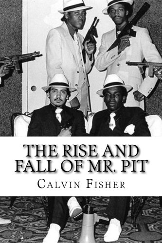 9781511998833: The rise and fall of Mr. Pit