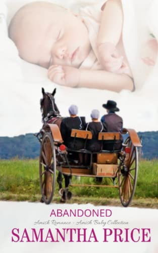 9781512002614: Abandoned (Amish Baby Collection) (Volume 3)