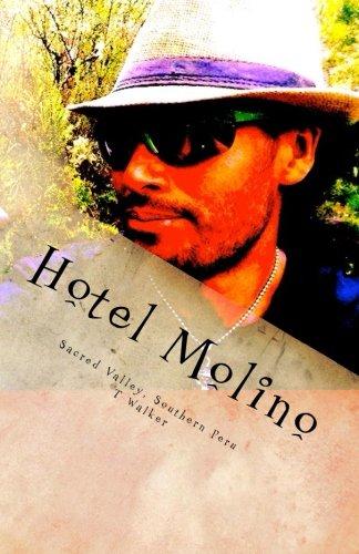 9781512017434: Hotel Molino