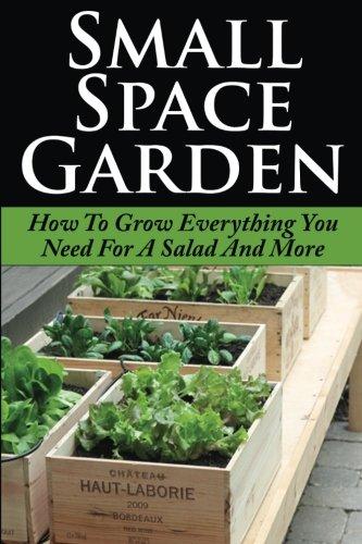 9781512021653: Small Space Garden