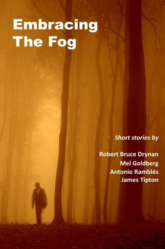 9781512079333: Embracing The Fog
