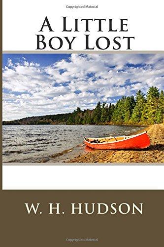9781512109436: A Little Boy Lost