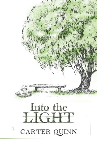 9781512220872: Into the Light: Volume 2 (Avery)