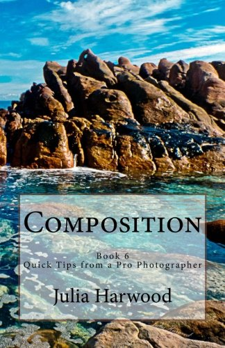 9781512246582: Composition: Book 6 (Quick Tips from a Pro Photographer) (Volume 6)