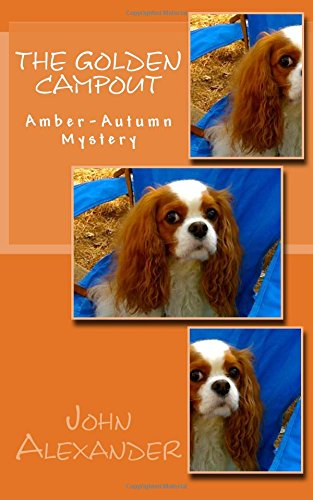 9781512316629: The Golden Campout: Amber-Autumn Mystery (Volume 3)