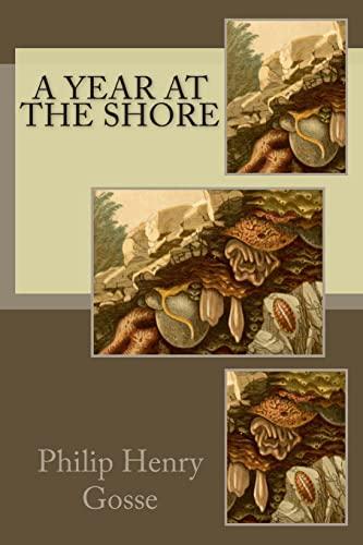 9781512339888: A Year at the Shore