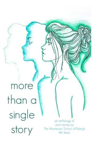 9781512376173: More Than a Single Story