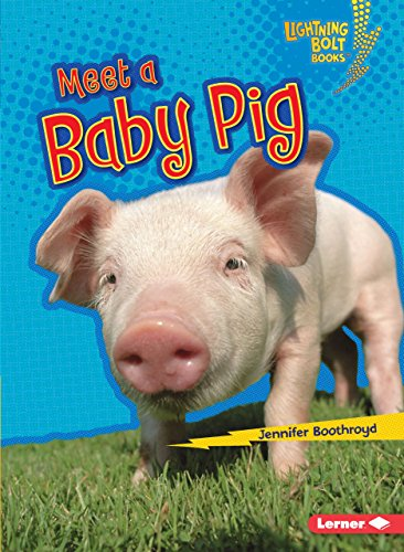Meet a Baby Pig (Lightning Bolt Books Baby Farm Animals): Boothroyd, Jennifer