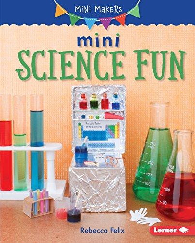 9781512426342: Mini Science Fun (Mini Makers)