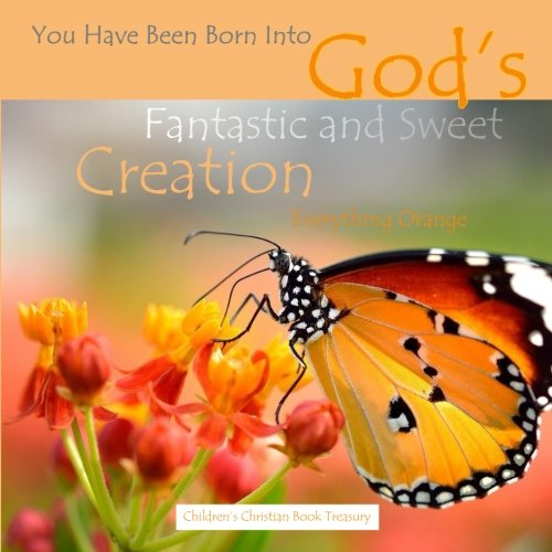 9781514128237: Everything Orange: God's Fantastic and Sweet Creation: Baby's First Look Around Bible Story Book