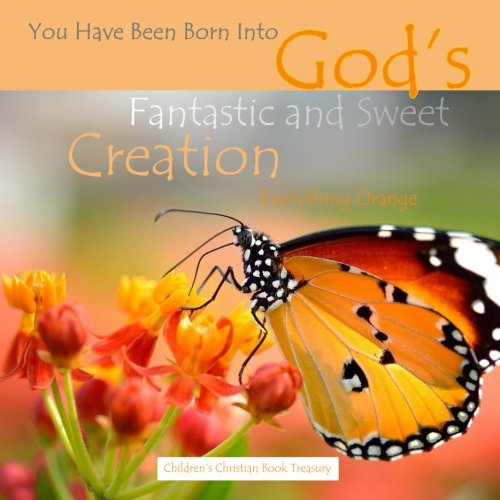 9781514128251: Everything Orange: God's Fantastic and Sweet Creation: Baby's First Look Around Bible Story Book