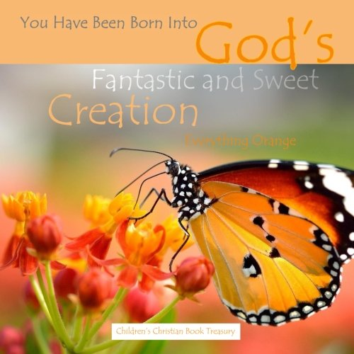 9781514128275: Everything Orange: God's Fantastic and Sweet Creation: Baby's First Look Around Bible Story Book