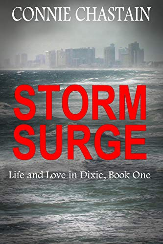 9781514140703: Storm Surge (Life and Love in Dixie)